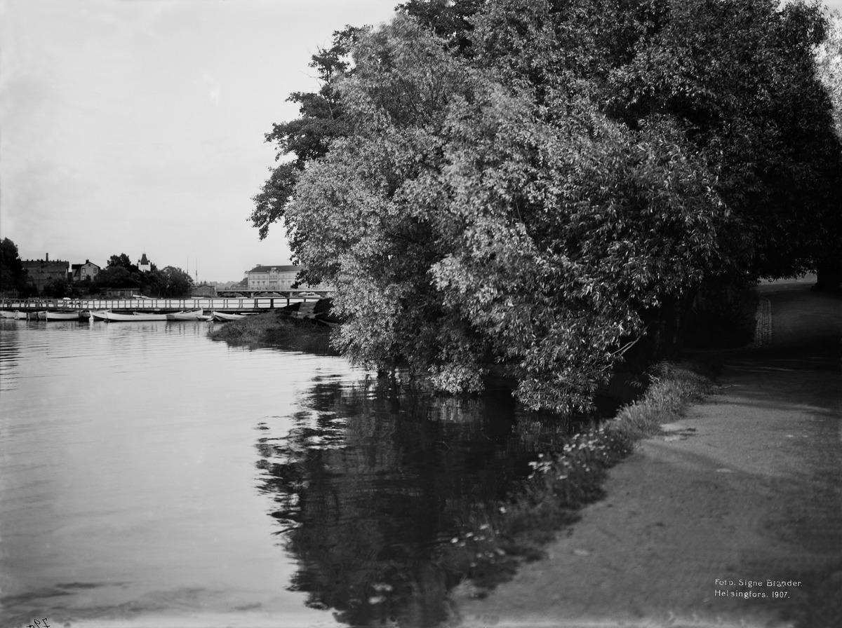 Kaisaniemen ranta