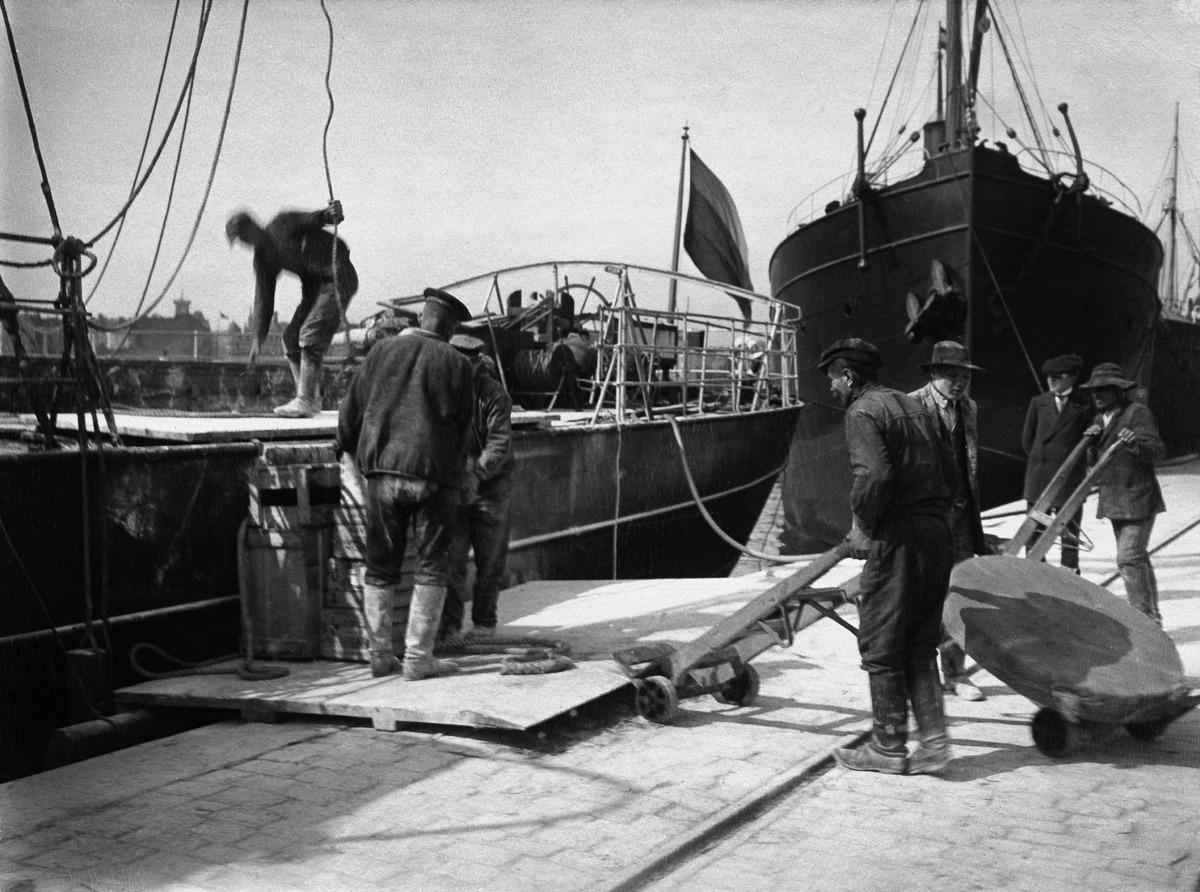 Ahtaajat purkavat  laivan lastia Katajanokanlaiturilla Eteläsatamassa.