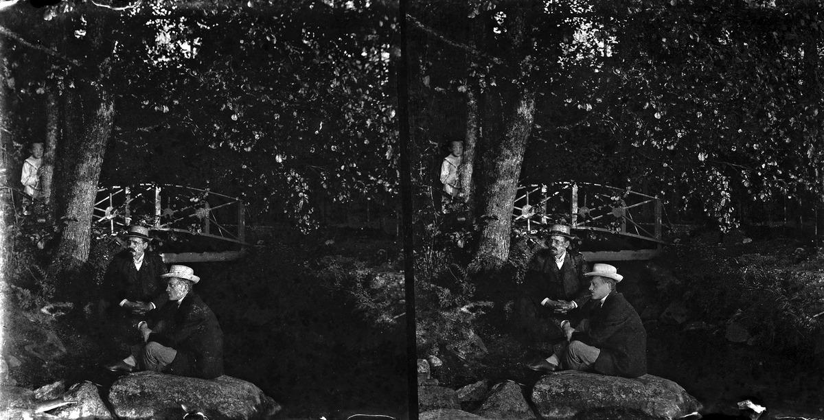 Miehiä puistossa