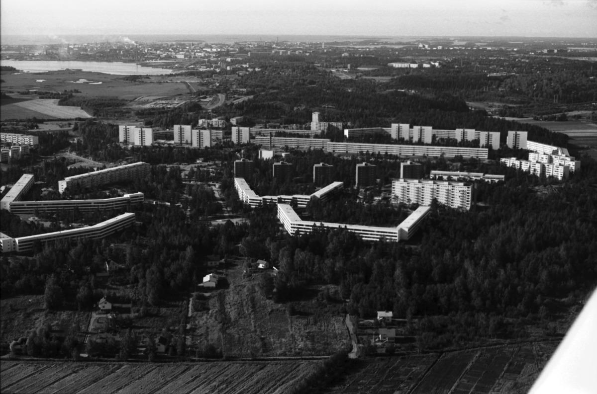 Pihlajamäki v. 1970 (Rista Simo / kaupunginmuseo)