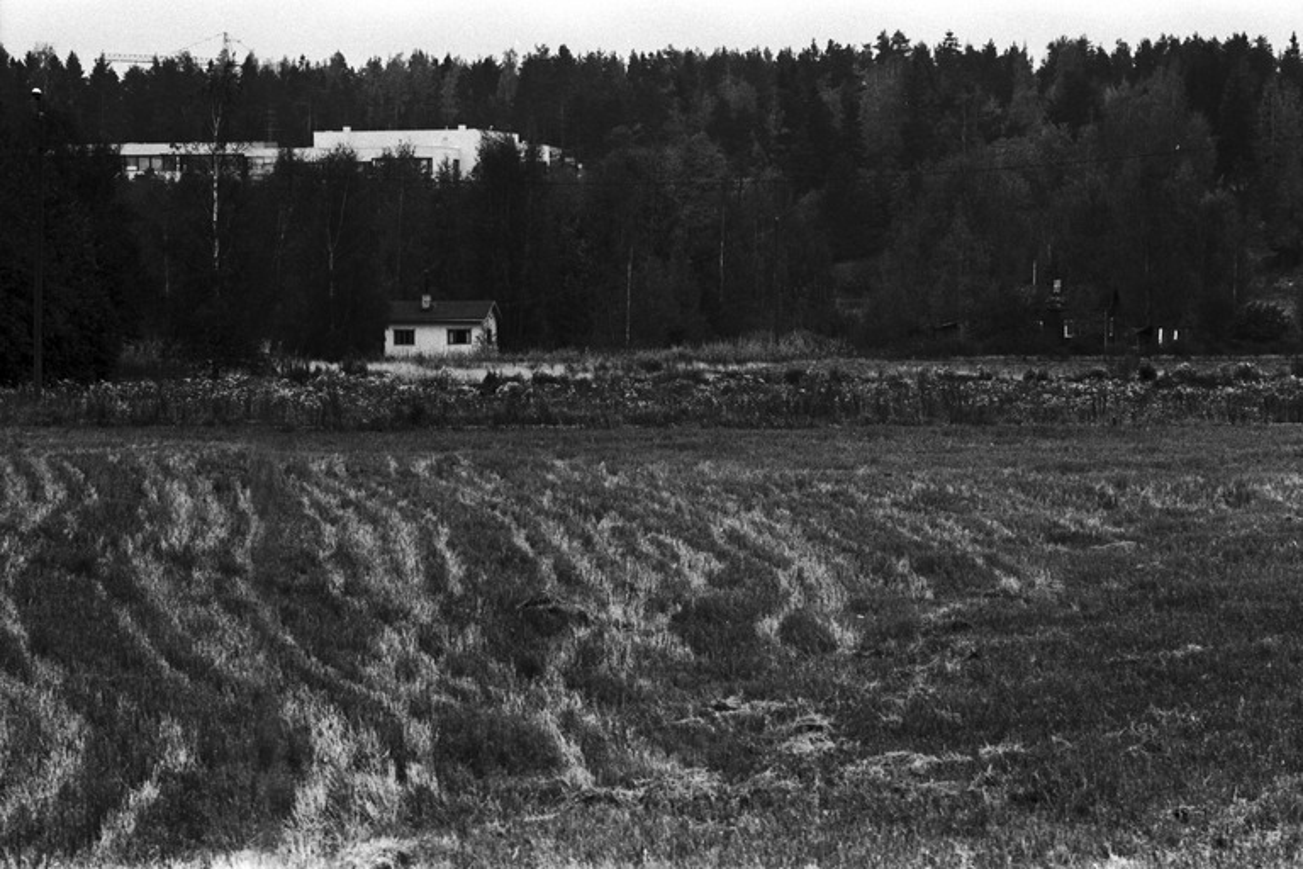 Mellunkylä, Mellunmäki