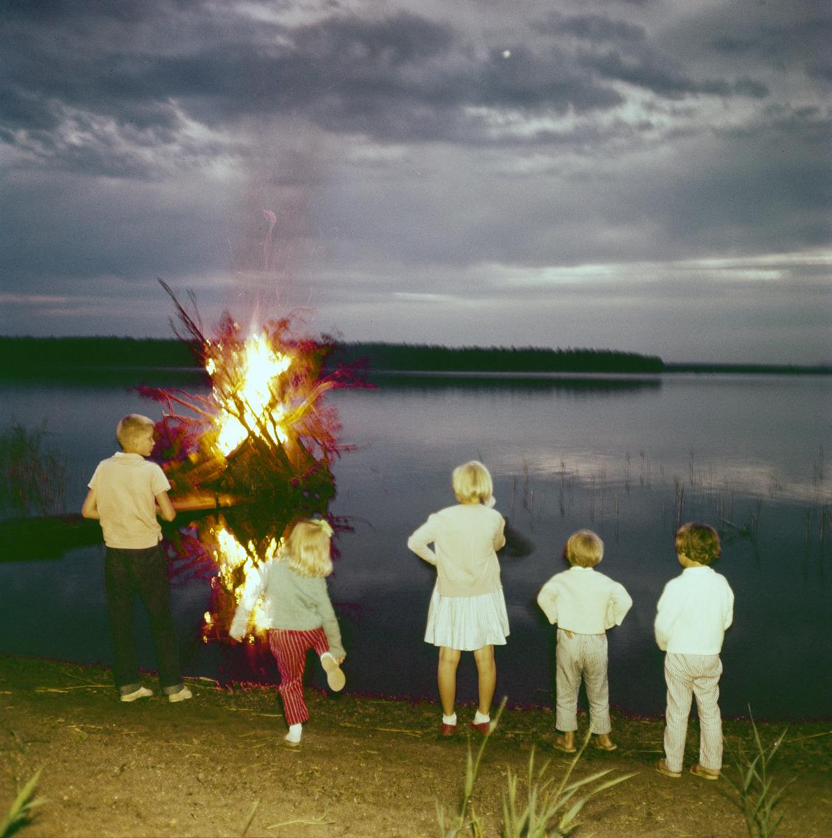 Lapsia ihailemassa kokkoa veden äärellä juhannuksena.