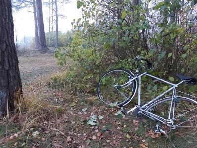 Hylätty polkupyörä Tuorinniemenpuiston kallioilla