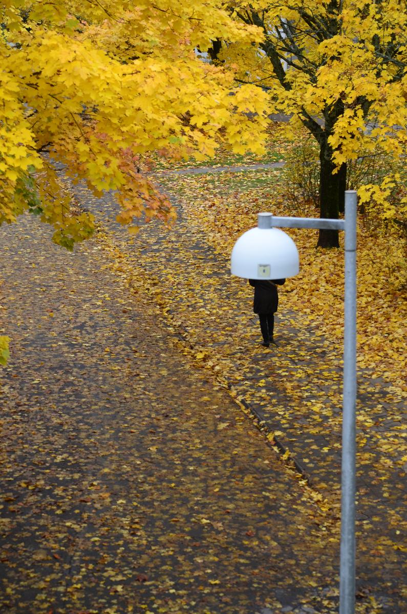 Yksinäinen kulkija kävelee puista pudonneiden syksyisten lehtien peittämällä jalkakäytävällä koronapandemian aikana