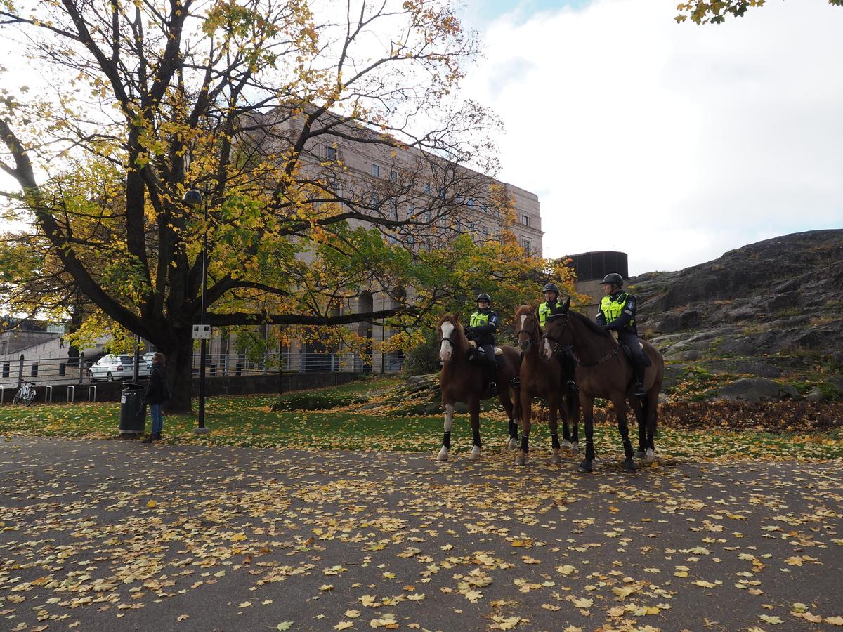 Kolme ratsupoliisia hevosineen Eduskuntatalon viereisessä Eduskuntapuistossa Mannerheimintien varrella