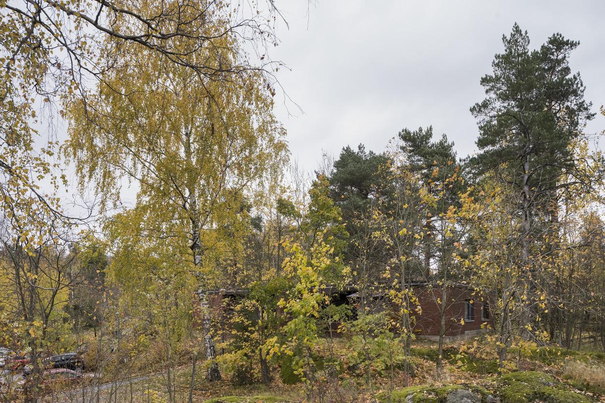 Pihlajistontie 3, Pihlajamäki