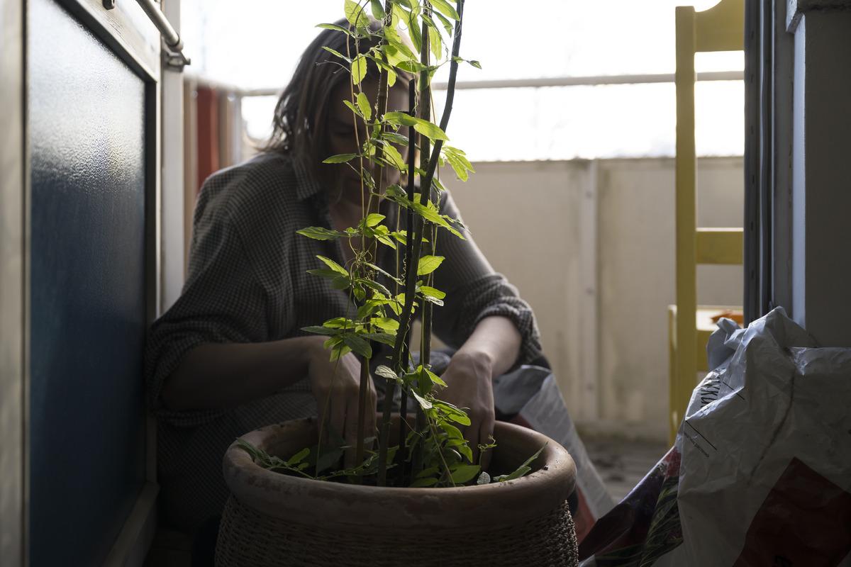 Hiihtäjäntie 8, Herttoniemi, nainen istuttaa parvekkeella taimia suureen ruukkuun