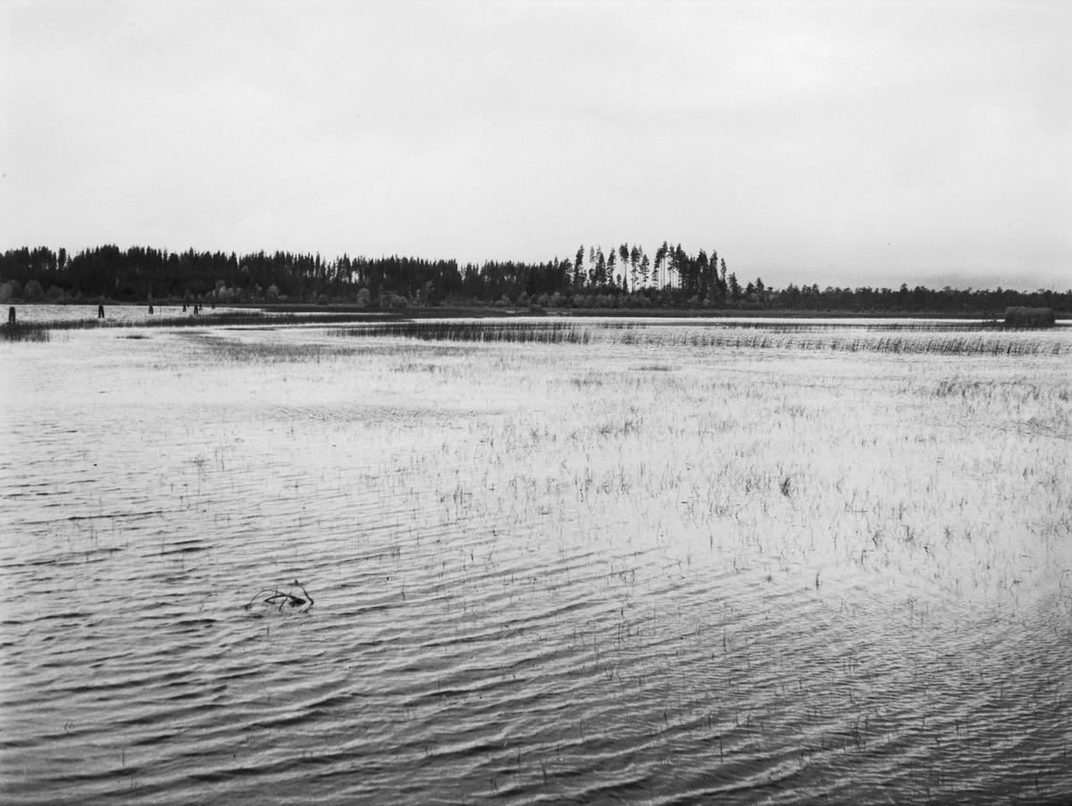 Mekrijärvi